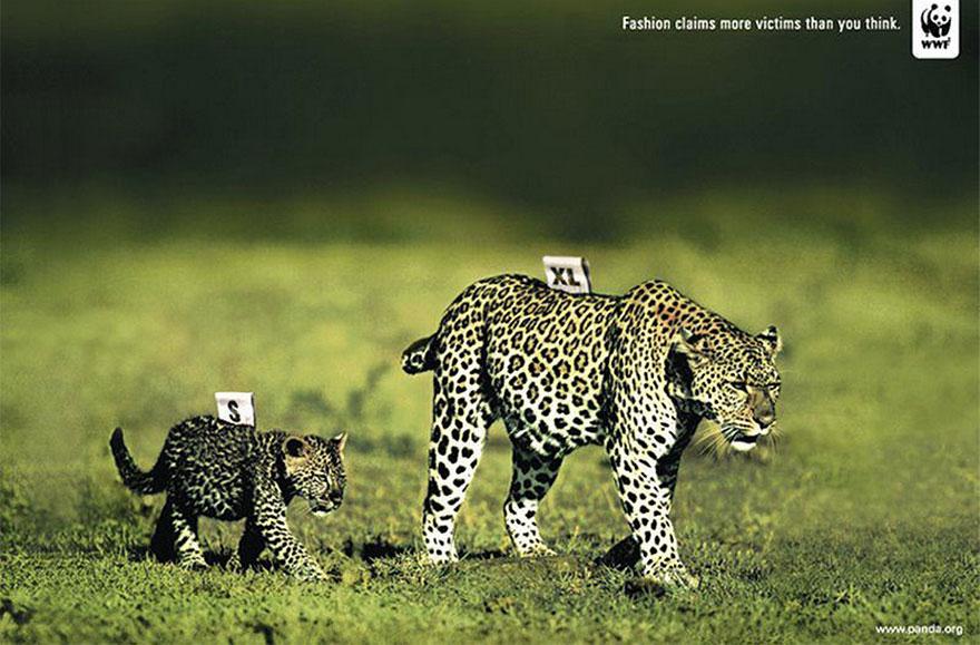 動物廣告321