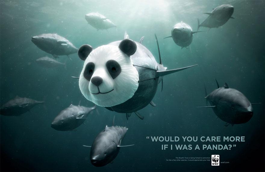動物廣告331