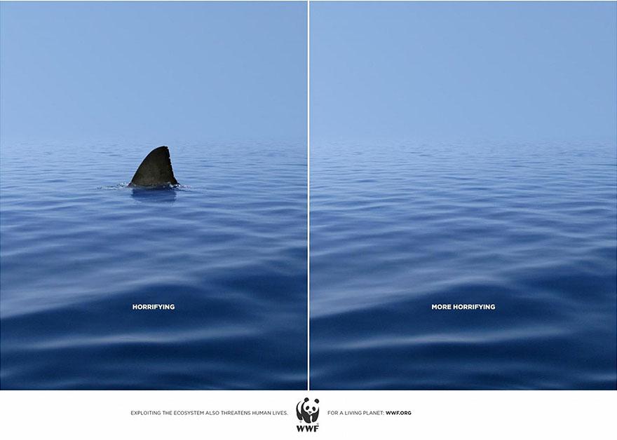 動物廣告41