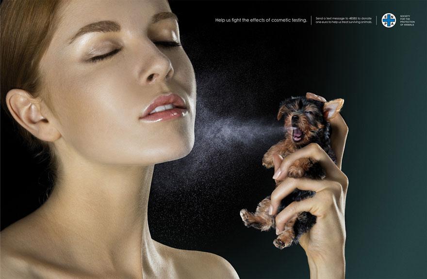 動物廣告61