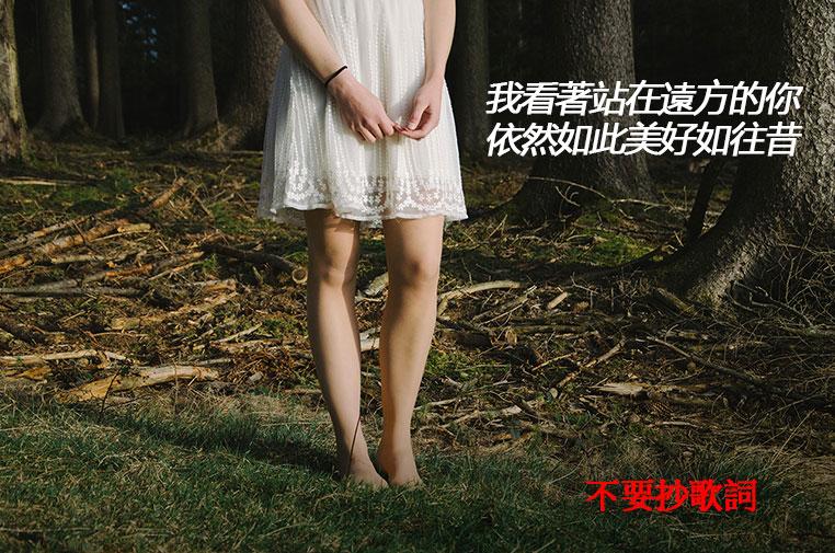 文青海報06