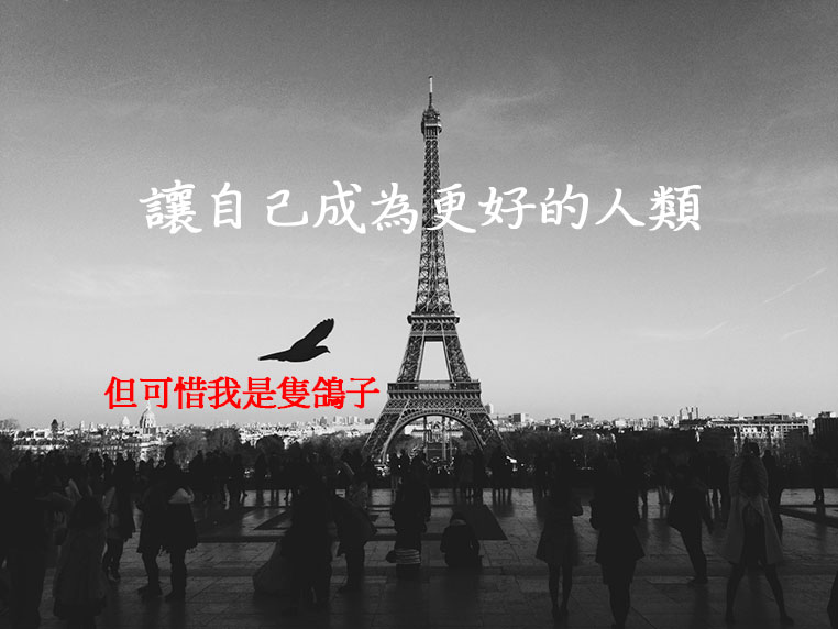 文青海報8