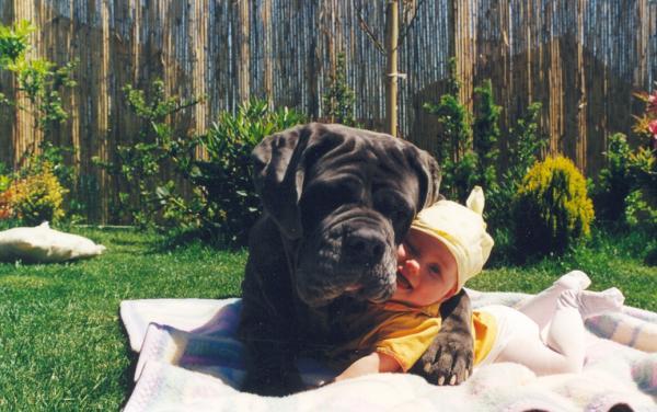 小孩與大狗1