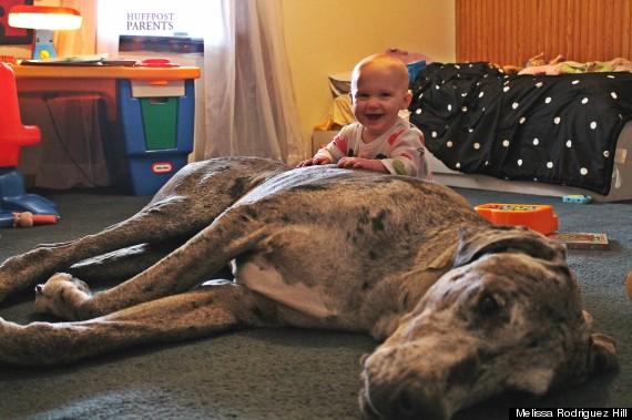 小孩與大狗12