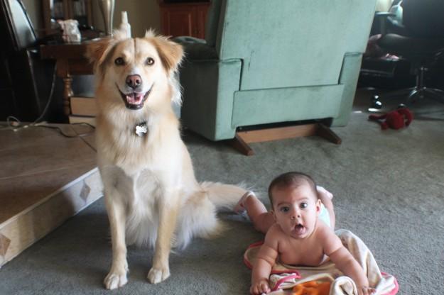 小孩與大狗13