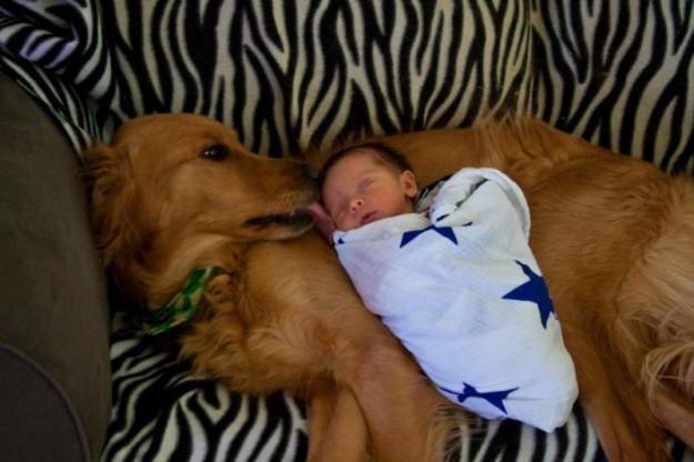 小孩與大狗17