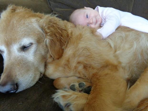 小孩與大狗2