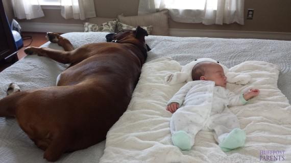 小孩與大狗4