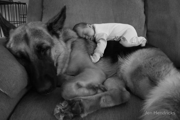 小孩與大狗5