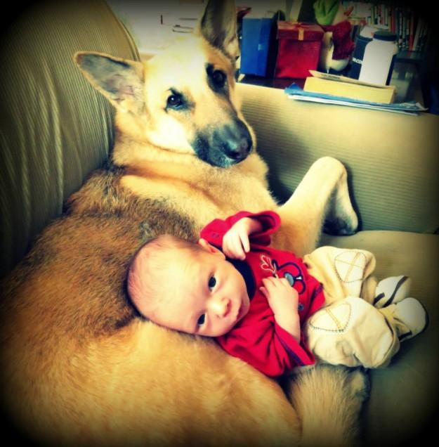 小孩與大狗8