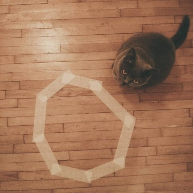 召喚貓咪10