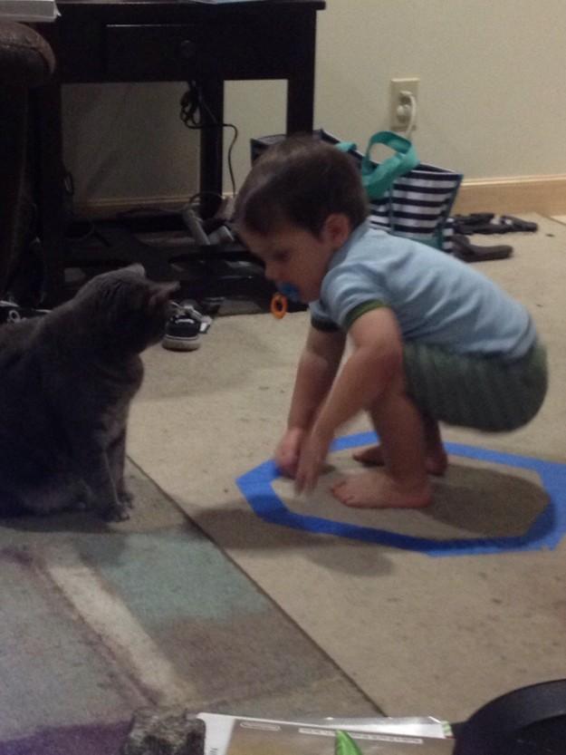 召喚貓咪8