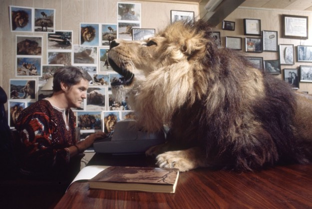 Marshall & Neil The Lion