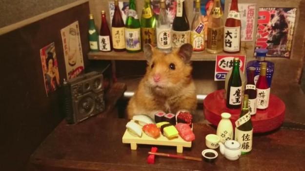 倉鼠酒館1