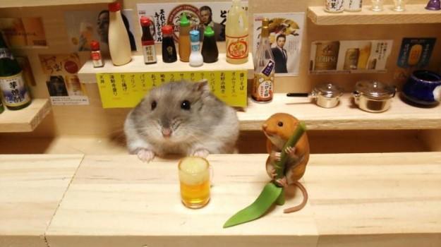 倉鼠酒館4