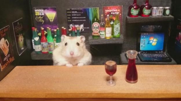 倉鼠酒館5