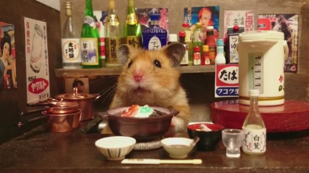 倉鼠酒館7