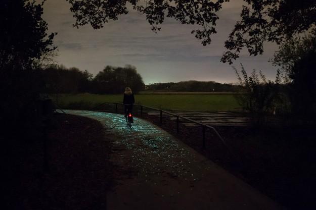 夜光自行車道8