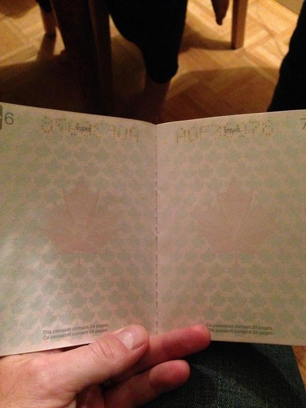 加拿大護照1