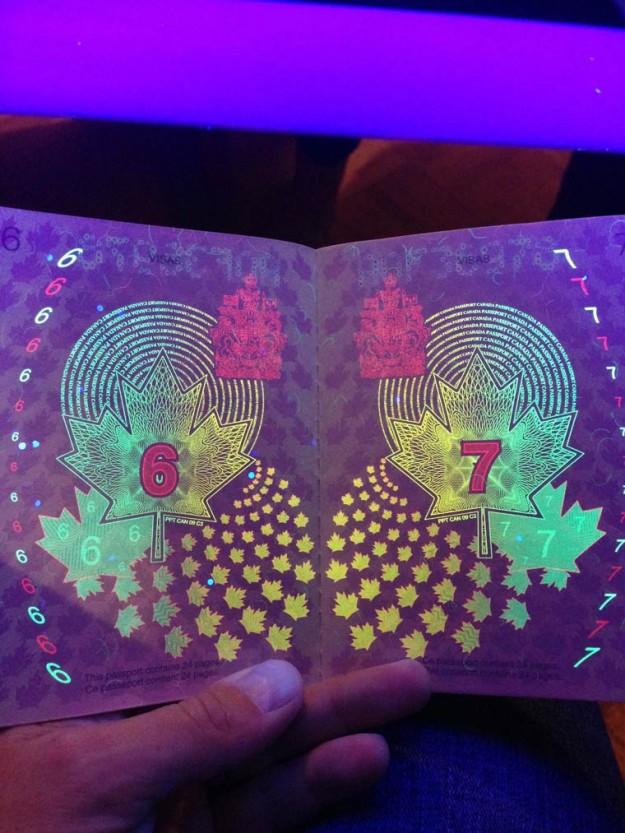 加拿大護照2