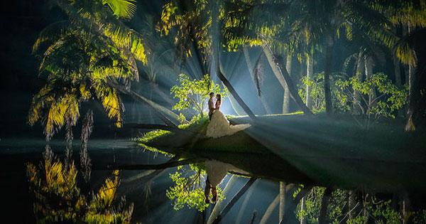 12張來自世界各地最美的獲獎婚紗照