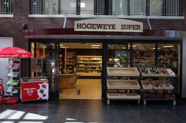 Hogeweyk村4