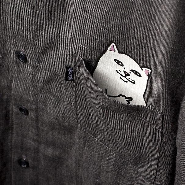 貓咪口袋5