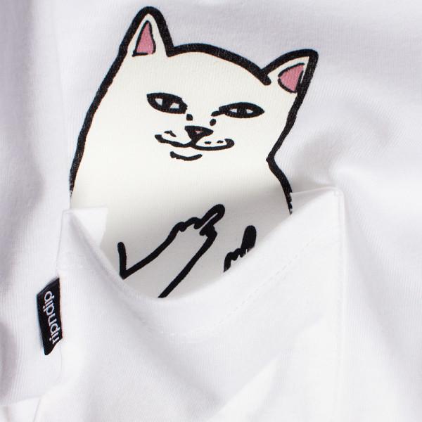 貓咪口袋8