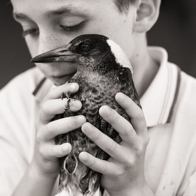 人鳥感情12