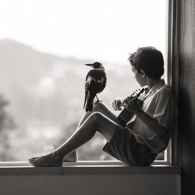 人鳥感情16