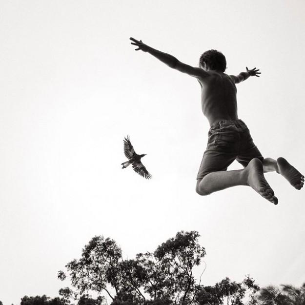 人鳥感情5