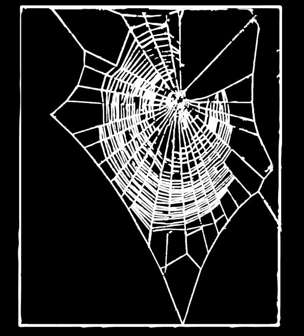 吸毒蜘蛛5
