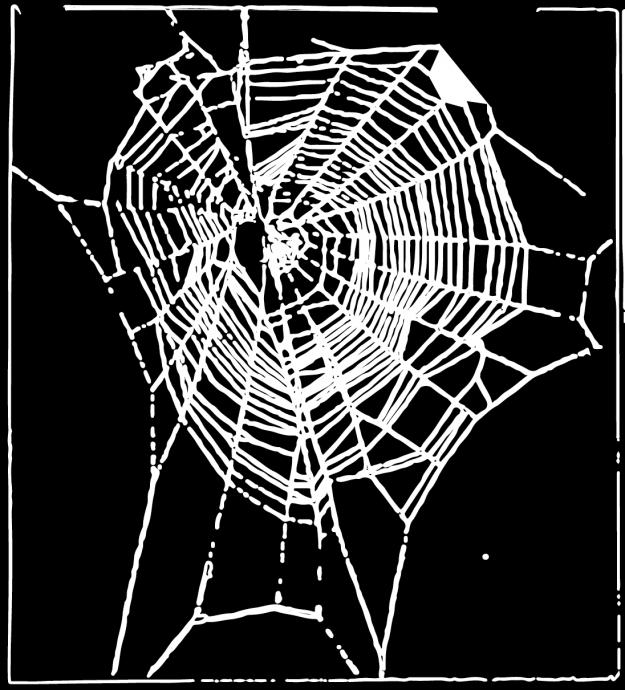 吸毒蜘蛛7